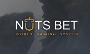 Натс бет — описание официального сайта
